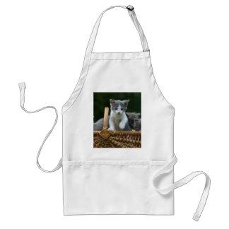 gatito en una cesta delantales