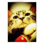Gatito enfadado tarjeta