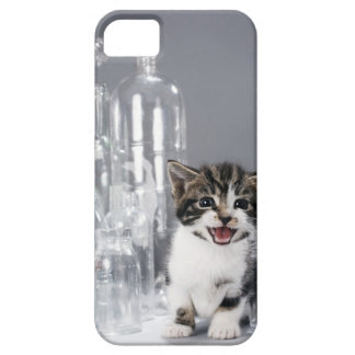 Gatito entre las botellas y los tarros reciclados iPhone 5 carcasas