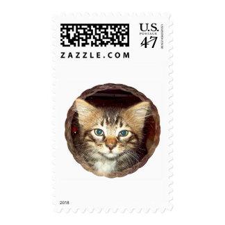 Gatito escaso timbres postales