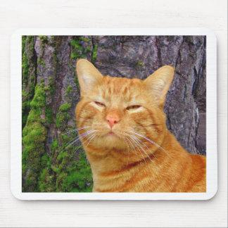 ¡Gatito feliz Kat! Tapete De Raton