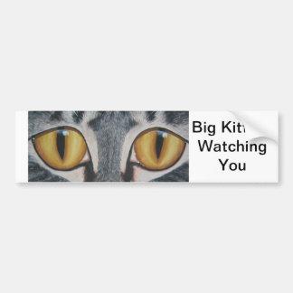 Gatito grande etiqueta de parachoque