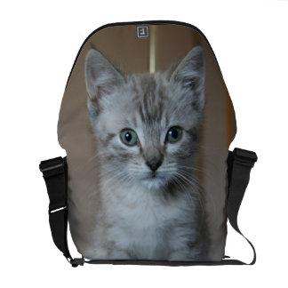 Gatito gris del Tabby Bolsas De Mensajería