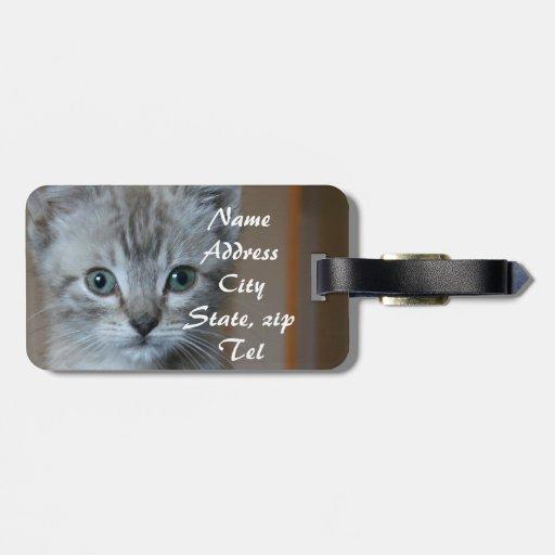 Gatito gris del Tabby Etiquetas Maleta