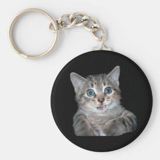 Gatito gris del tigre con los ojos azules llaveros