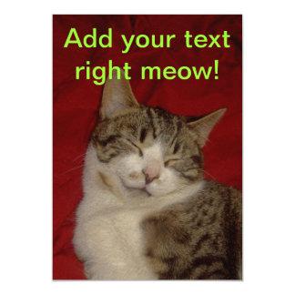 Gatito gris en rojo anuncio