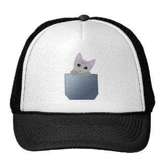 Gatito gris en un ejemplo del bolsillo del dril de gorras de camionero