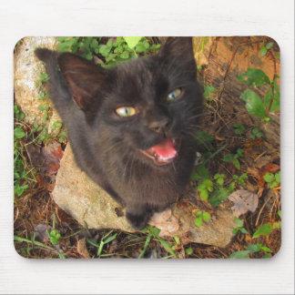 gatito gritador alfombrillas de ratones