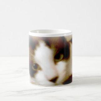 gatito helado ahumado de la raqueta taza