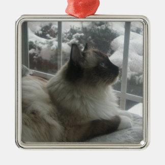 Gatito Himalayan Ornamen de la nieve del navidad Adorno Navideño Cuadrado De Metal