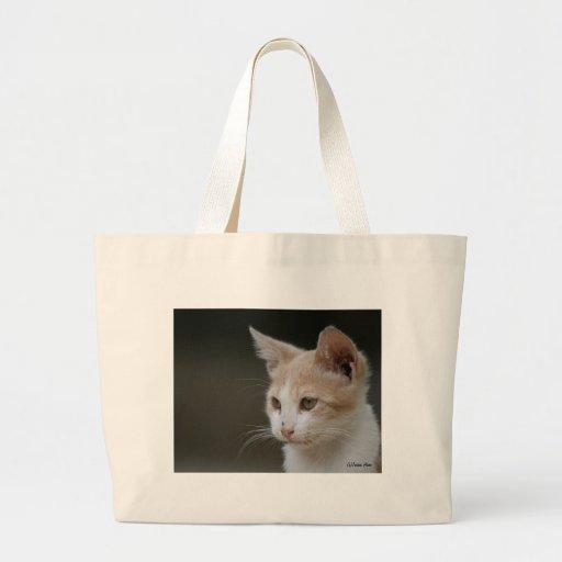 Gatito joven bolsa