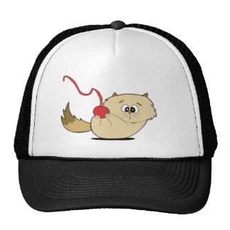 Gatito juguetón gorras de camionero