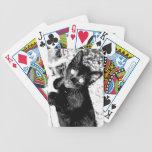 Gatito Kat Baraja Cartas De Poker