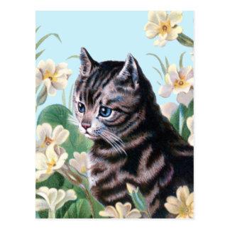 Gatito lindo - arte del gato del vintage postal