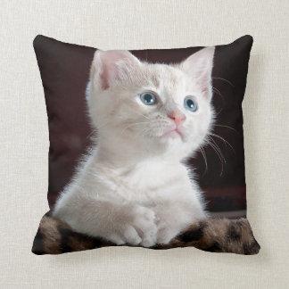 Gatito lindo cojín