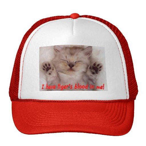 Gatito lindo con la cita de Charlie Sheen Gorra