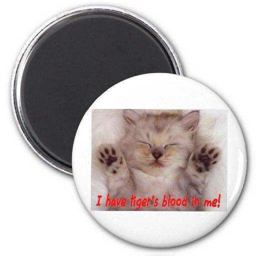 Gatito lindo con la cita de Charlie Sheen Imán Redondo 5 Cm
