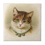 Gatito lindo con las campanas en el collar - para  tejas