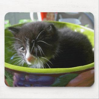 Gatito lindo del bebé del gato del gatito del smok alfombrilla de ratón