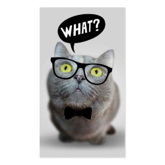 Gatito lindo del gato con los vidrios qué cita div tarjeta de visita