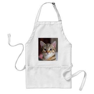 Gatito lindo del gato de Tabby Delantal