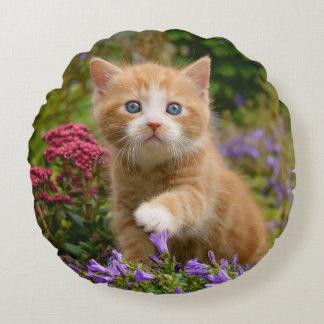 Gatito lindo del jengibre en un jardín cojín redondo
