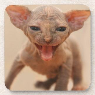 Gatito lindo del sphynx con la lengua hacia fuera posavaso