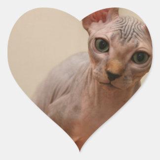 ¿Gatito lindo del sphynx soy furless es usted Calcomanía Corazón