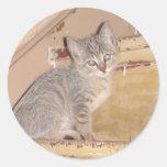Gatito lindo etiquetas redondas