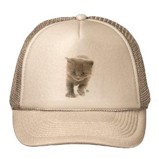 gatito lindo gorras de camionero