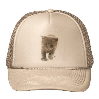 gatito lindo gorros bordados