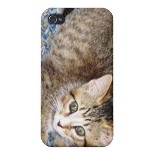 gatito lindo iPhone 4 fundas