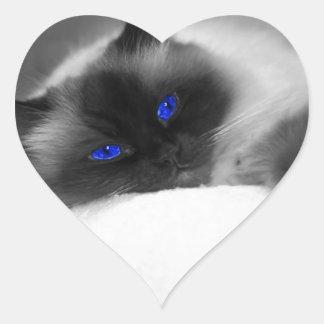 Gatito lindo pegatina en forma de corazón