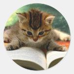 Gatito lindo que lee un libro pegatina redonda