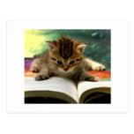 Gatito lindo que lee un libro postales