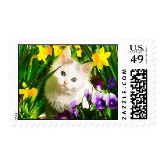 Gatito lindo sellos