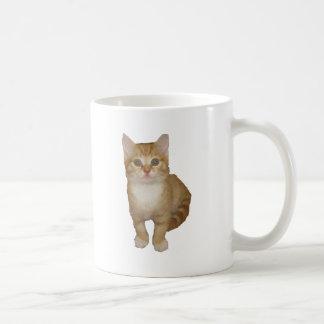 Gatito lindo tazas