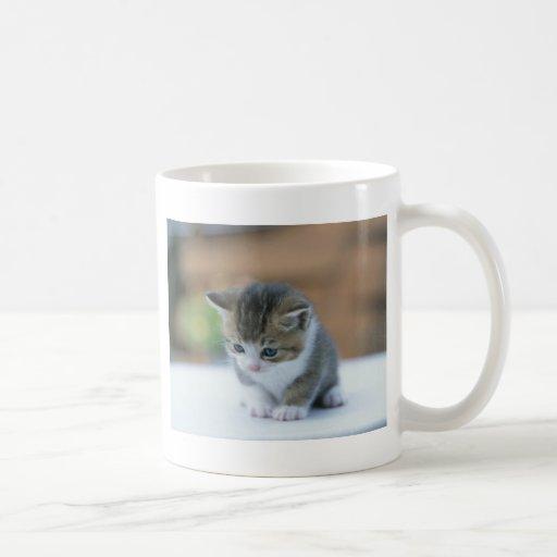Gatito lindo taza básica blanca