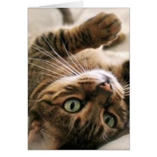 Gatito manchado Brown lindo del gato de Bengala Tarjeta De Felicitación