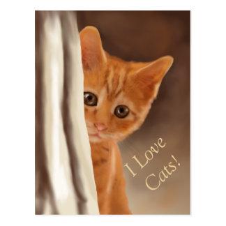Gatito mullido del jengibre detrás de la cortina tarjetas postales