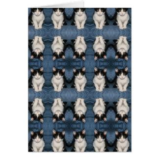 gatito multi del poco tarjeta de felicitación