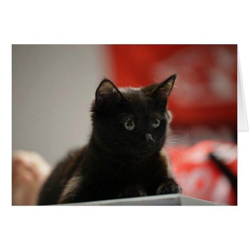 Gatito negro cariñoso tarjeta de felicitación