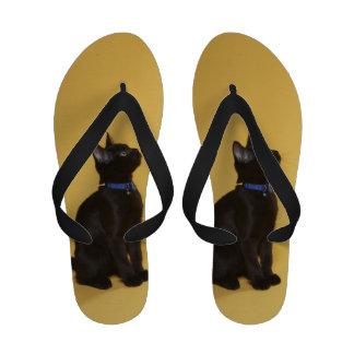 Gatito negro en cuello