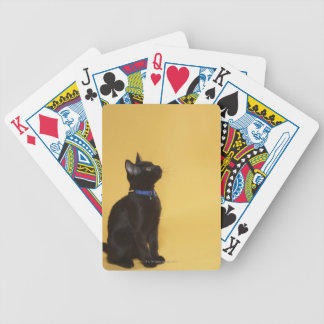 Gatito negro en cuello baraja de cartas