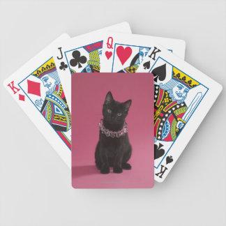 Gatito negro que lleva el collar jeweled baraja