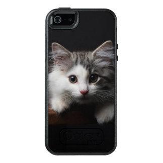 Gatito noruego del bosque funda otterbox para iPhone 5/5s/SE