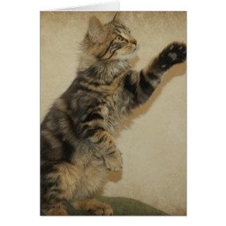 Gatito Notecard del tigre - jugando Tarjeta Pequeña