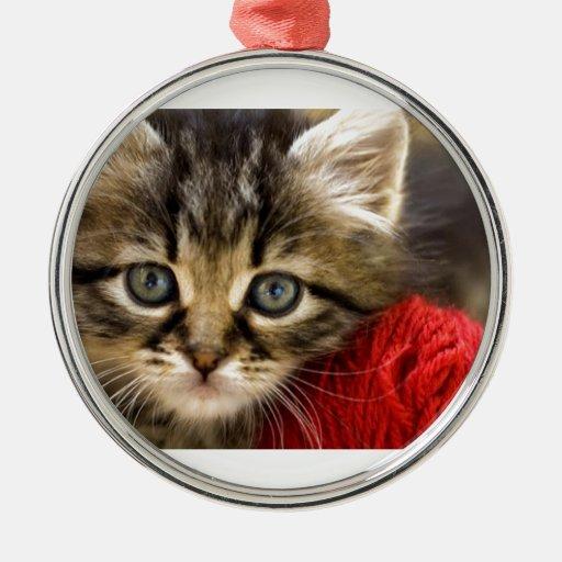 Gatito observado azul curioso con una bola roja adorno navideño redondo de metal