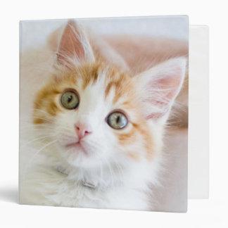 "Gatito observado azul dulce carpeta 1 1/2"""