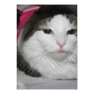 """Gatito ocultado invitación 5"""" x 7"""""""